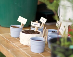 Why make your own seed raising mix?